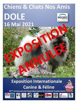 Expositions   Expositions Canines   Engagement en ligne